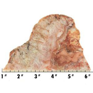 Slab1339 - Sagenite Agate Slab